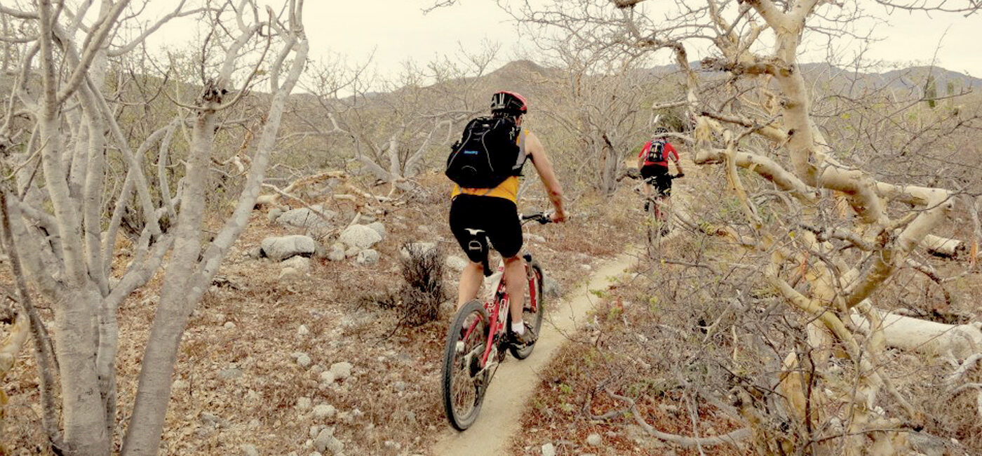 Baja mountain bike tours, Mexico