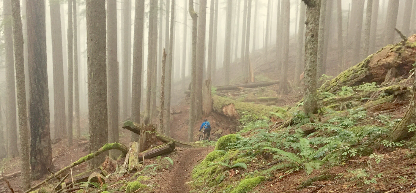 Alpine Trail, Oakridge Oregon